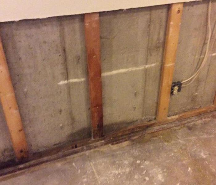 Basement Affected by Mold in Aurora, CO After