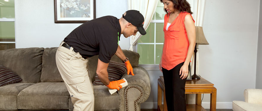 Aurora, CO carpet upholstery cleaning